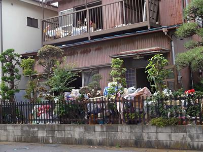 ゴミ屋敷の片付け風景
